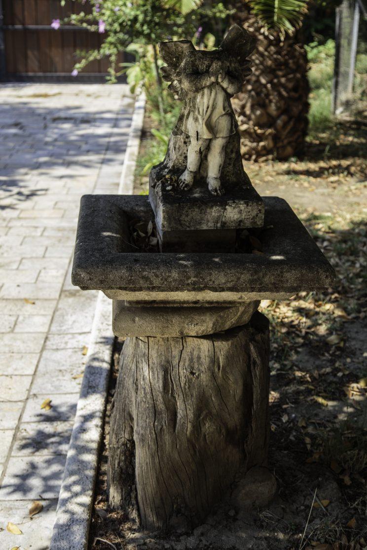Cortile - Convento dei Francescani OFM - Scutari - Albania. L'albero dove spesso nel suo libro veniva lasciato Pllumi durante il suo periodo di carcerazione nel Convento.